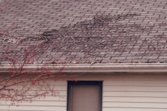 Roofing Problems 12